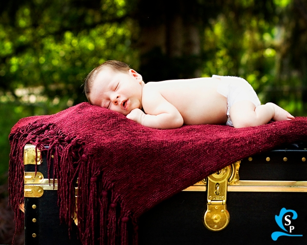 Orem, Provo Newborn Photography